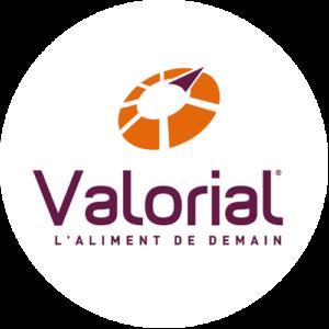 logo_valorial
